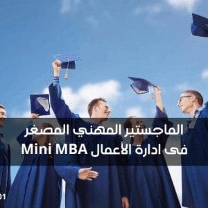 الماجستير المهني المصغر فى ادارة الأعمال Mini MBA