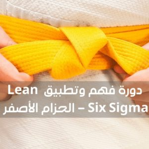 "The Understanding and Application of the Lean Six Sigma Methodology - Yellow Belt ""online"""